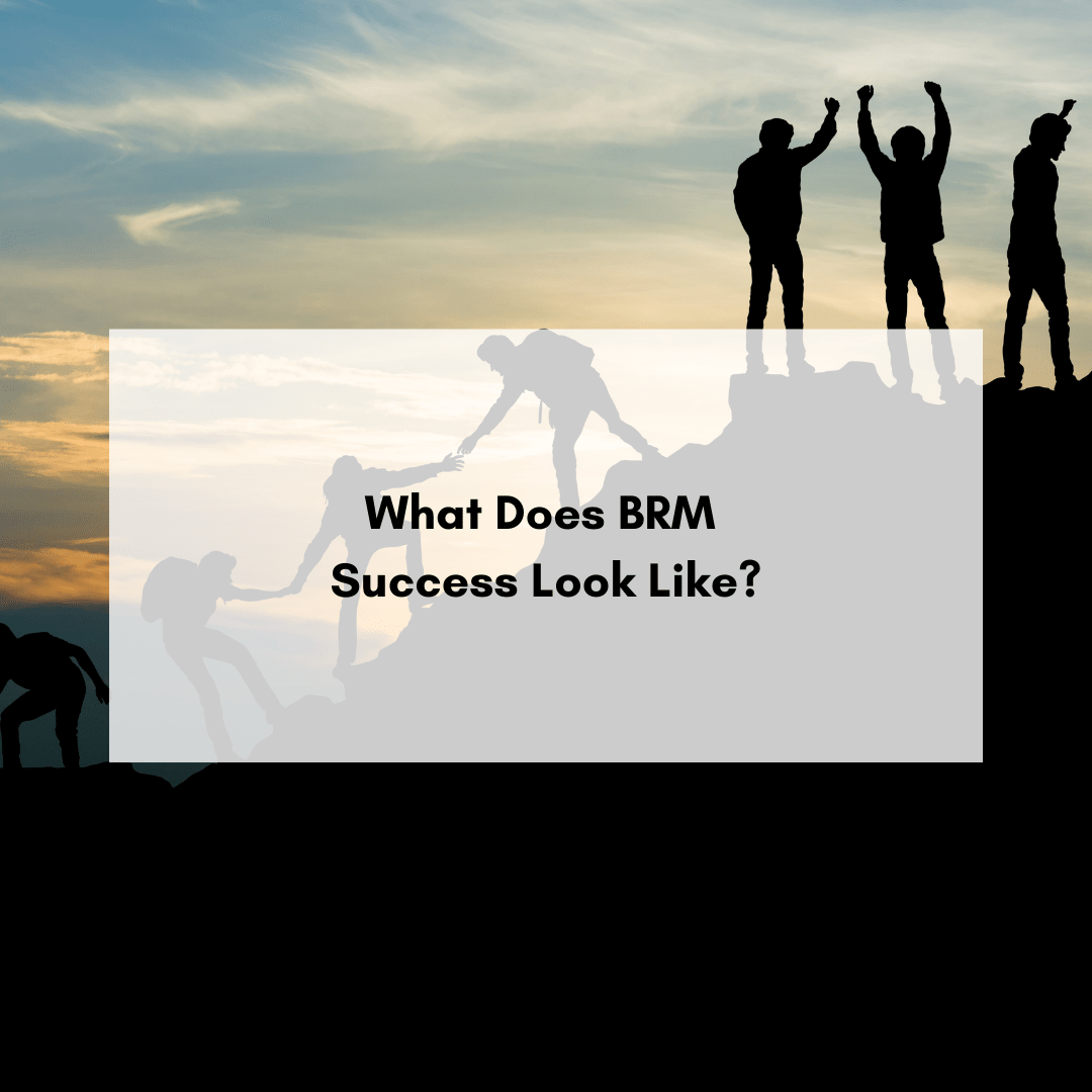 What Does BRM Success Look Like?
