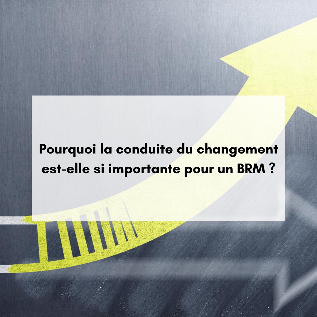 Pourquoi la conduite du changement est-elle si importante pour un BRM ?